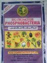 Phosphobacteria