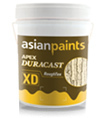Asian Paints Duracast Rough Tex