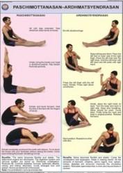 Paschimottanasan And Ardh Matsyendrasan Yoga Chart