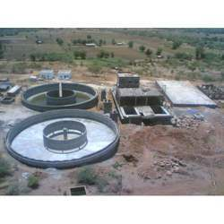 water plant services