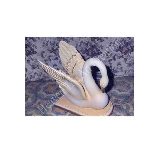 Swan Birds