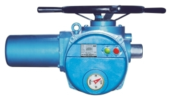 Multi Turn Electrical Actuator