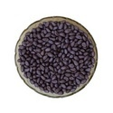 Seed Coat Violet
