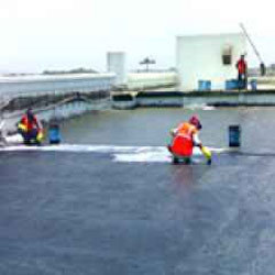 Elastomeric Coating Black