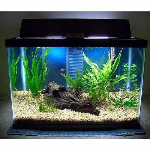 Aquarium fish tank prices for Fish tank price