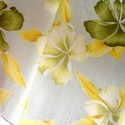Organic Pigment Printed Fabrics