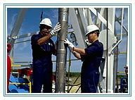 Manpower for Job Roles within the Oil and Gas Industry