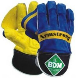 Armstrong Wicket Keeping Gloves