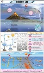 Origin of Life For General Chart