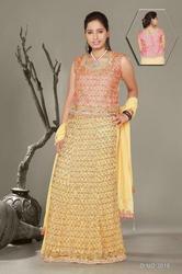 Bridal Lehengas Choli Collection