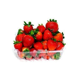 Portion+Size+Tray+For+Fruits