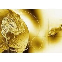 erp consulting and business process services