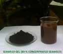 Seaweed Extract Gel