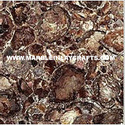 Petrified Wood Tile
