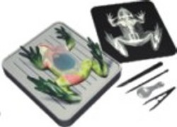 Simulated Frog Dissecting Kit Chart