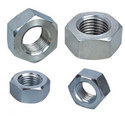 S. S. Hex Nuts