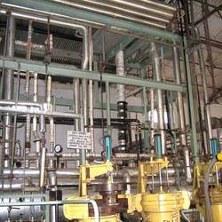 Supercritical Fluid Extraction Plant (SCFE)