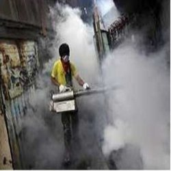 Reliable Smoke Fumigation Service