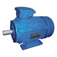 Multi Speed AC Motor