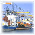 Ad Focean Freight Full Container Load Fcl
