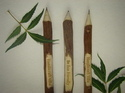 neem wooden pencil
