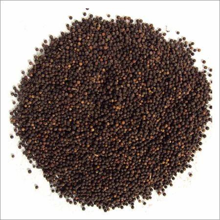 Baibrang(Embelia Ribes)