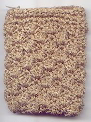 Crocheted Pouch CP19