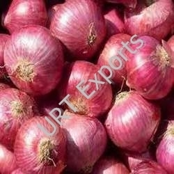 Pink Onion