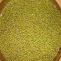Moong Sabut ( Mung Bean )