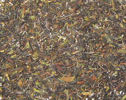 Darjeeling Second Flush Teas-balasun Tea