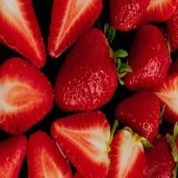 Cold Storage Facility for Strawberry Pulp