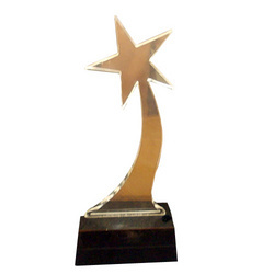 Acrylic Trophy14