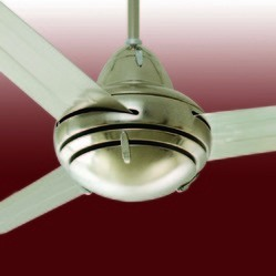 Decorative Ceiling Fans
