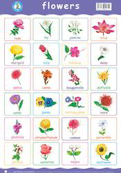 Flower Names In Tamil And English