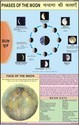 Phases Of The Moon Chart