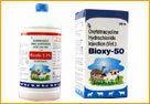 Veterinary Biologicals  Vaccine(Vbv-03)