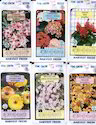 Fine Grow Flower Seeds Packets