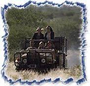 Jeep Safari - Across the Himalayas