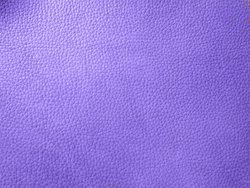 rambler leather print