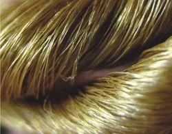 Golden Muga Silk Yarns