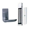 Electronic & Biometric Lock System