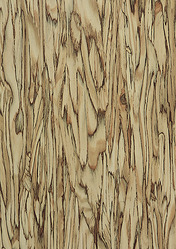 Fundermax Exterior Panels-Art-Strands-Naturals