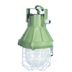 Flame Proof Non-Integral Well Glass Luminaires