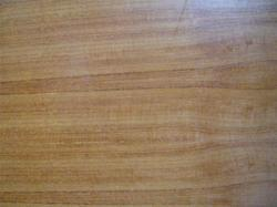 Ply with Teak Face