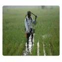 Crop Protection Fertilizers