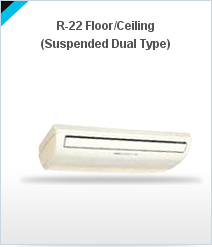 Floor & Ceiling AC
