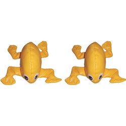 frog bean bags