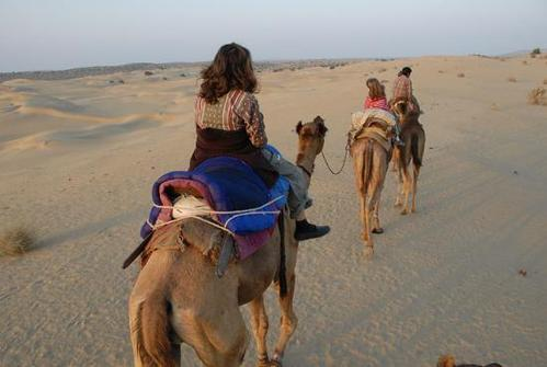 Golden Triangle with Camel Safari Tour