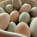 Poultry Table Eggs
