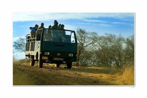 Luxury Jungle Safari Trips in India